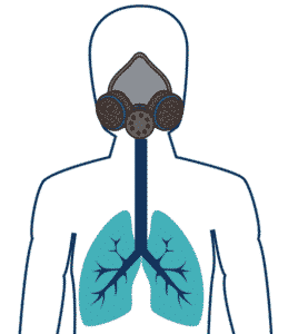 Illustration of how a Paint respirator keeps lungs VOC free