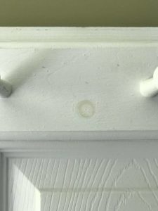 A coat rack without stain blocking primer shows a stain bleeding into paint