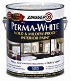 Decent wall paint